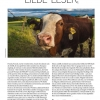 FIDELITY 57 Editorial